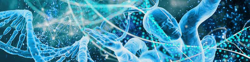 Genetics and Evolution NEET 2020